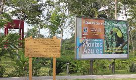 Las Guacamayas